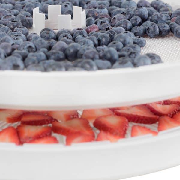 cómo deshidratar fruta