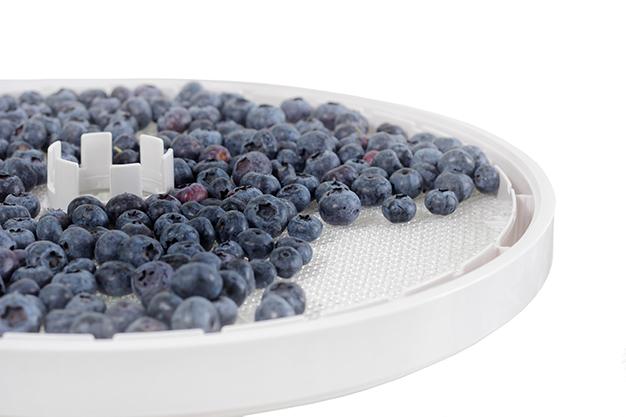 71. La fruta debe deshidratarse