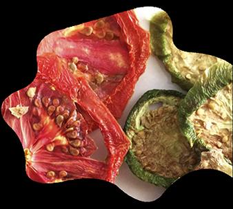 Verduras deshidratadas 1024x922 1